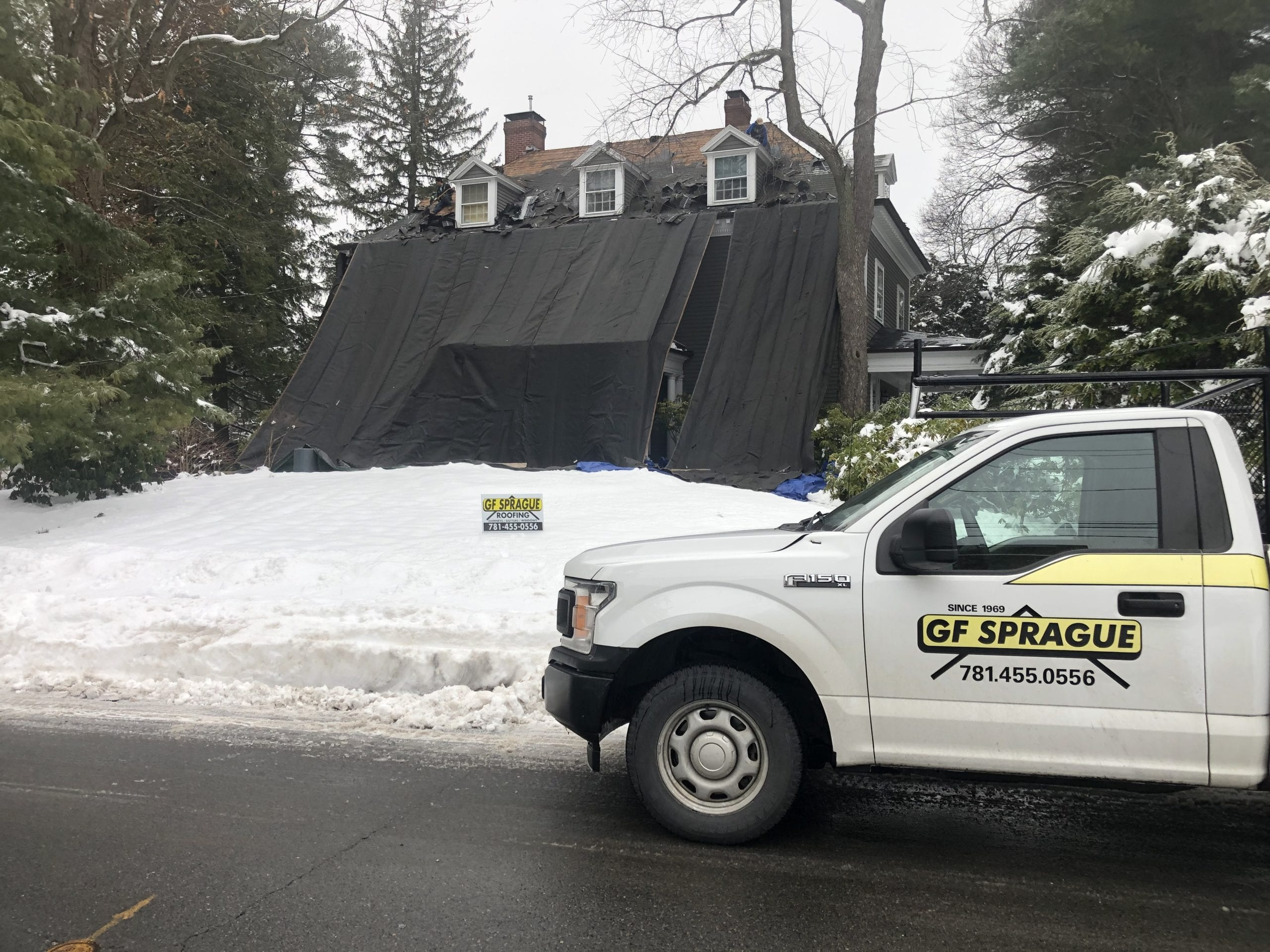 Our team protecting the shrubbery while replacing the asphalt shingle roof.