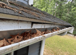 Clogged gutters filled with debris and leaves. The fascia is noticeable deteriorating.